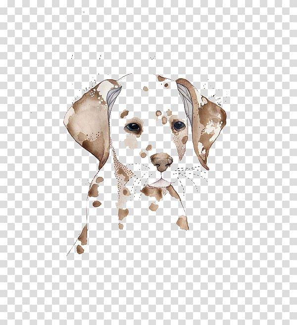 Pitbull clipart spotted dog. Brown illustration dalmatian watercolor