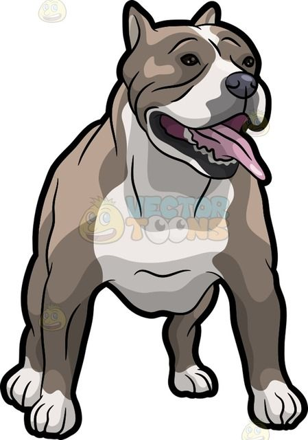 Pin on dogs . Pitbull clipart spotted dog