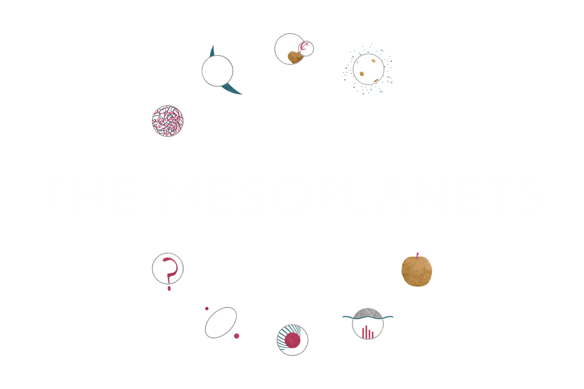 Planets clipart header twitter. The mesoplanets