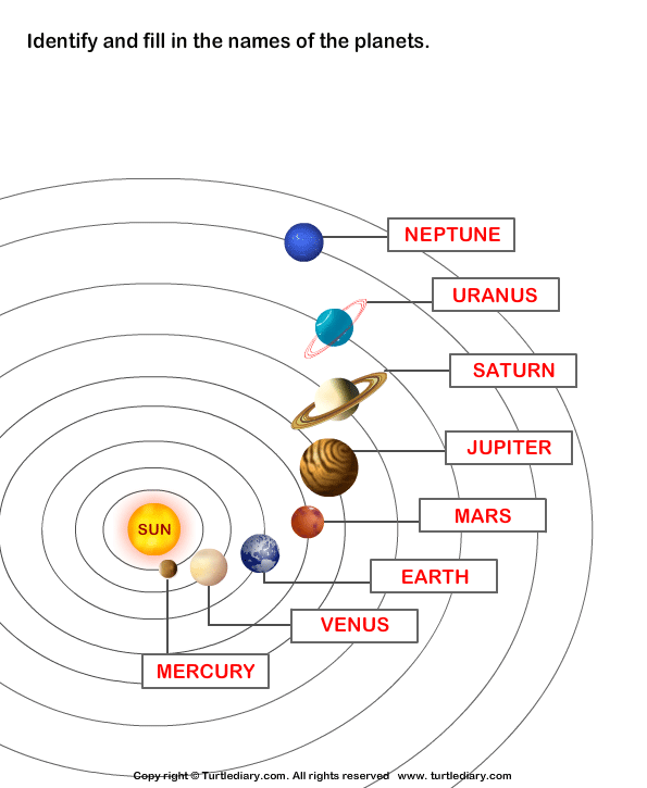 The solar system answer. Planets clipart label