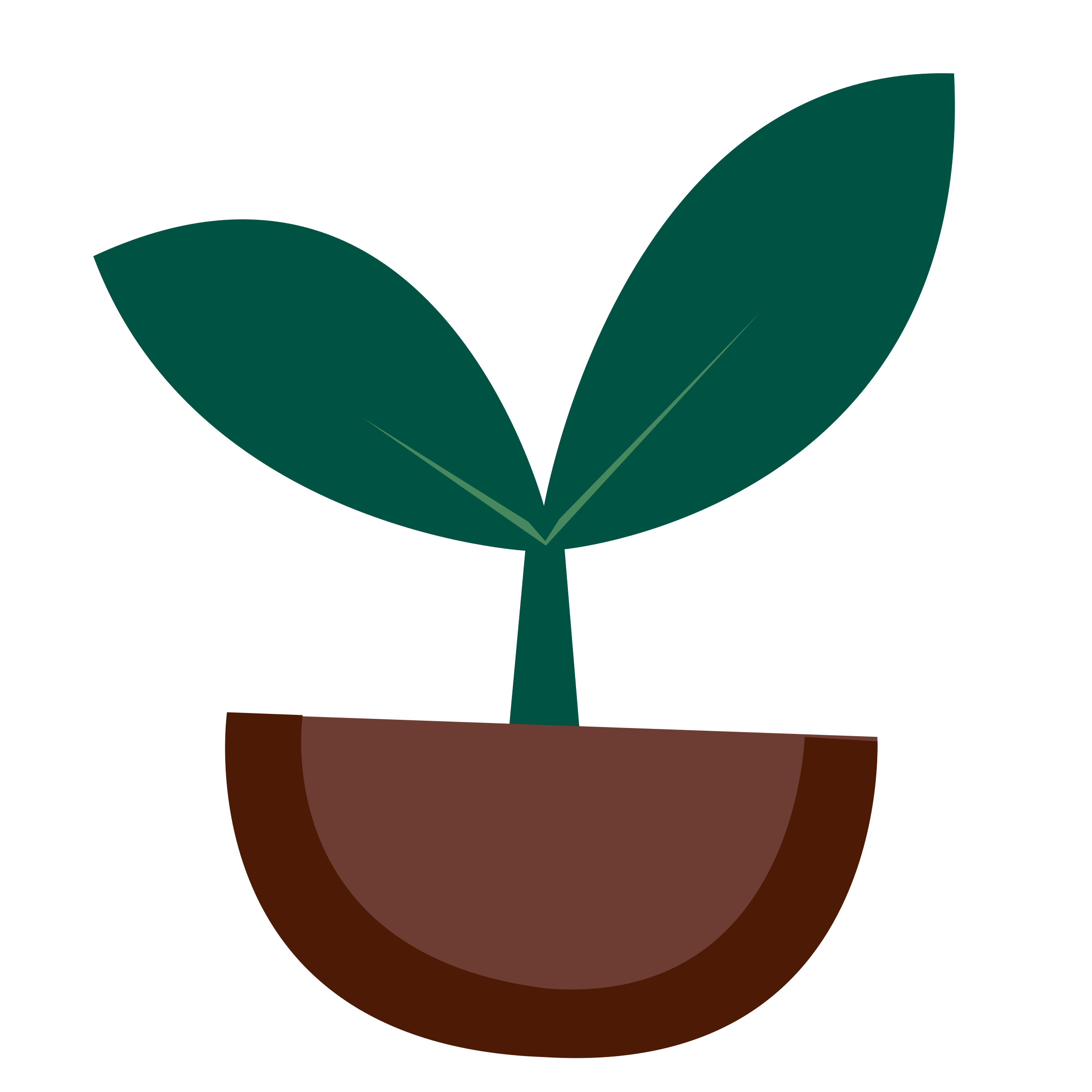 Parts of a at. Plant clipart