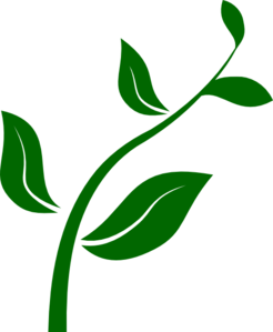 Plant clipart. Growing clip art at