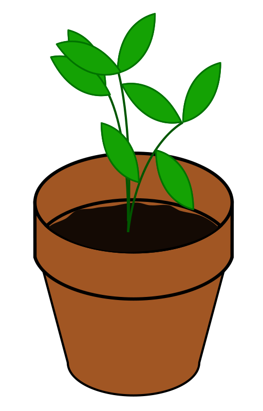Seedling clipart flower growth. Free plant cliparts download