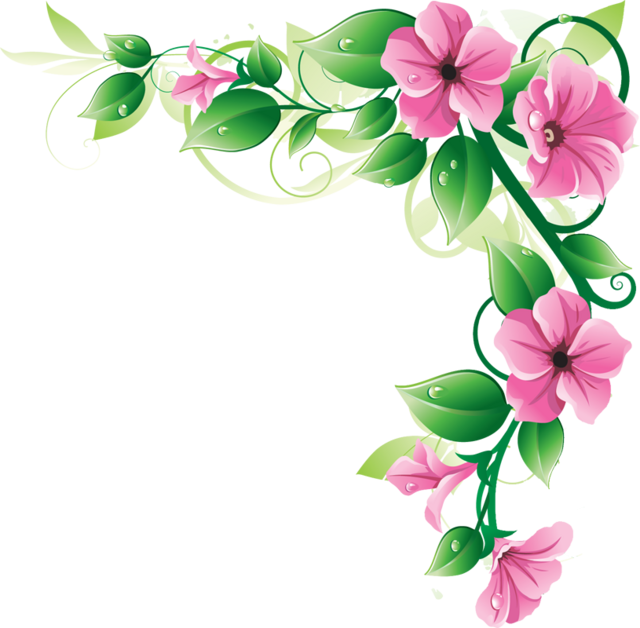 Flower borders png.  flowers image