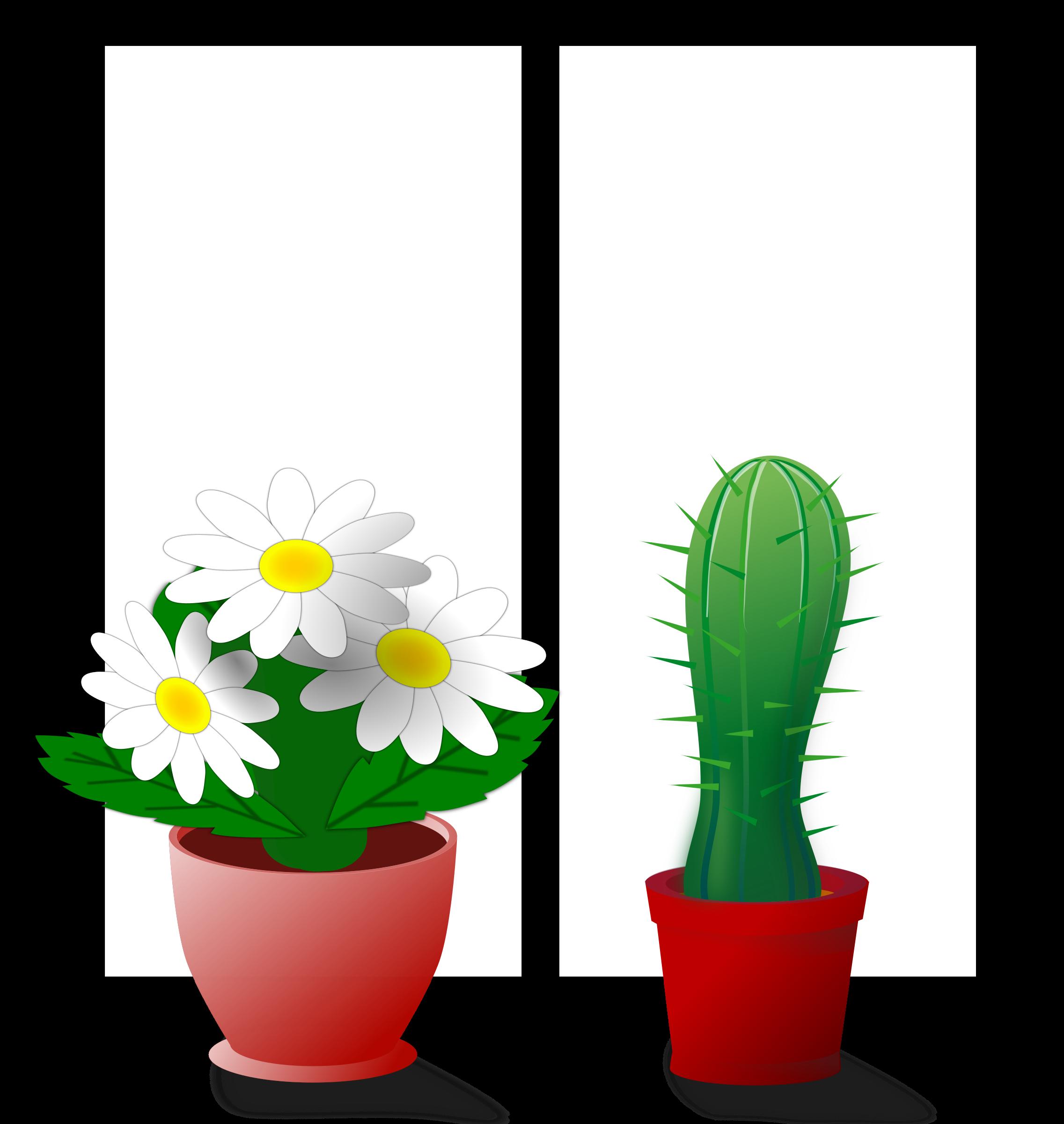 Plants clipart house plant. Window explore pictures