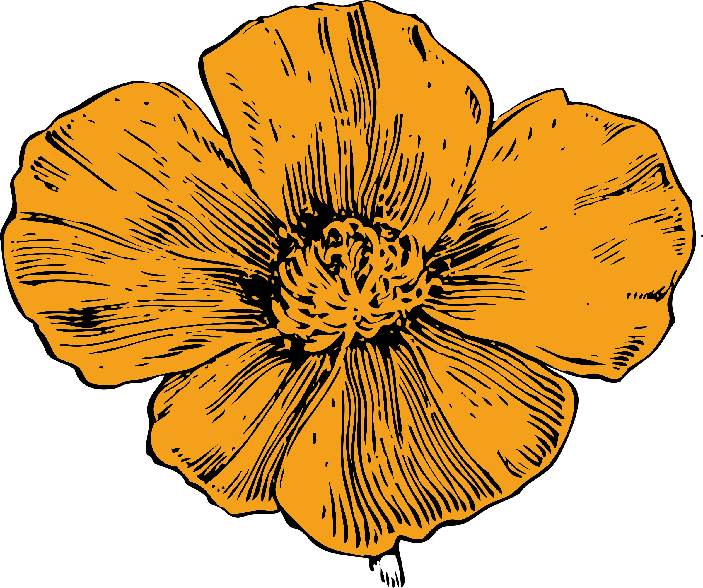 California big image png. Poppy clipart ww1