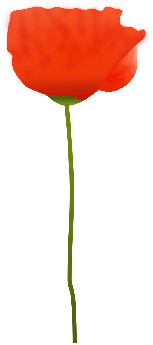 I royalty free public. Poppy clipart 5 flower