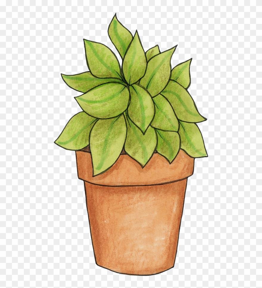 Planting clipart potted plant. Pot clip art png