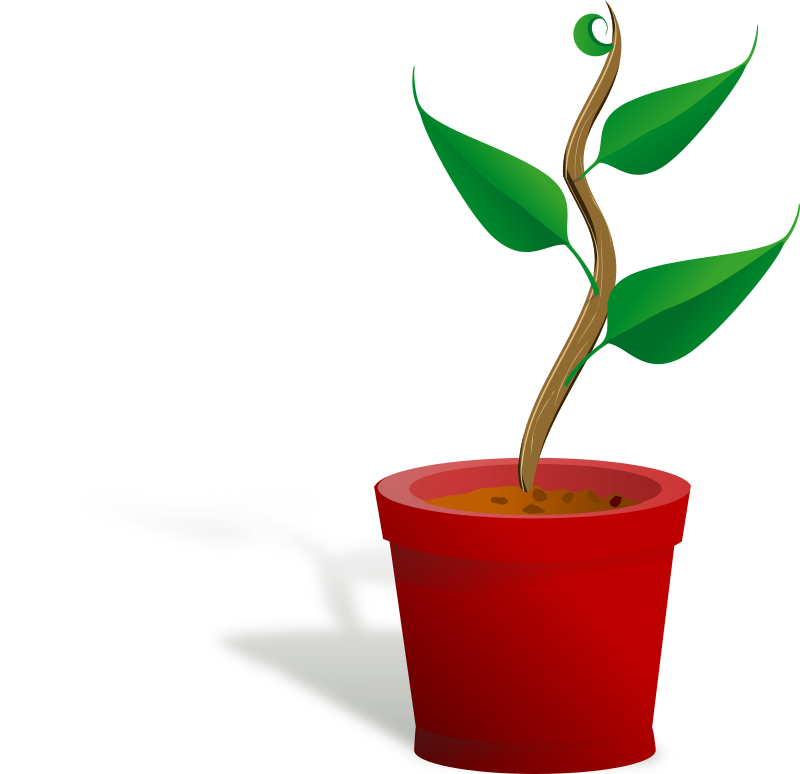Plant clipart potted plant. Growing medium image png