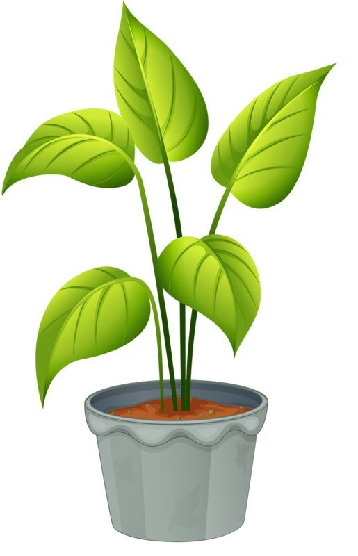 Easy drawings art clip. Plants clipart potted plant