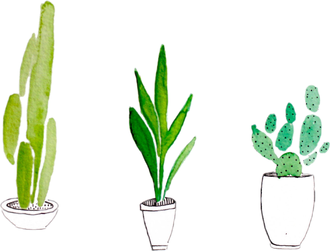 Plants tumblr sticker by. Plant clipart terrestrial plant