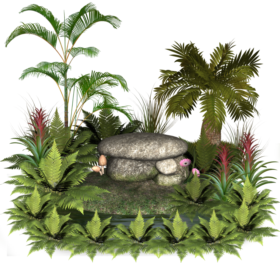 Plants and rocks by. Plant clipart terrestrial plant