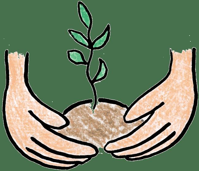 A messinsure com. Plant clipart tree