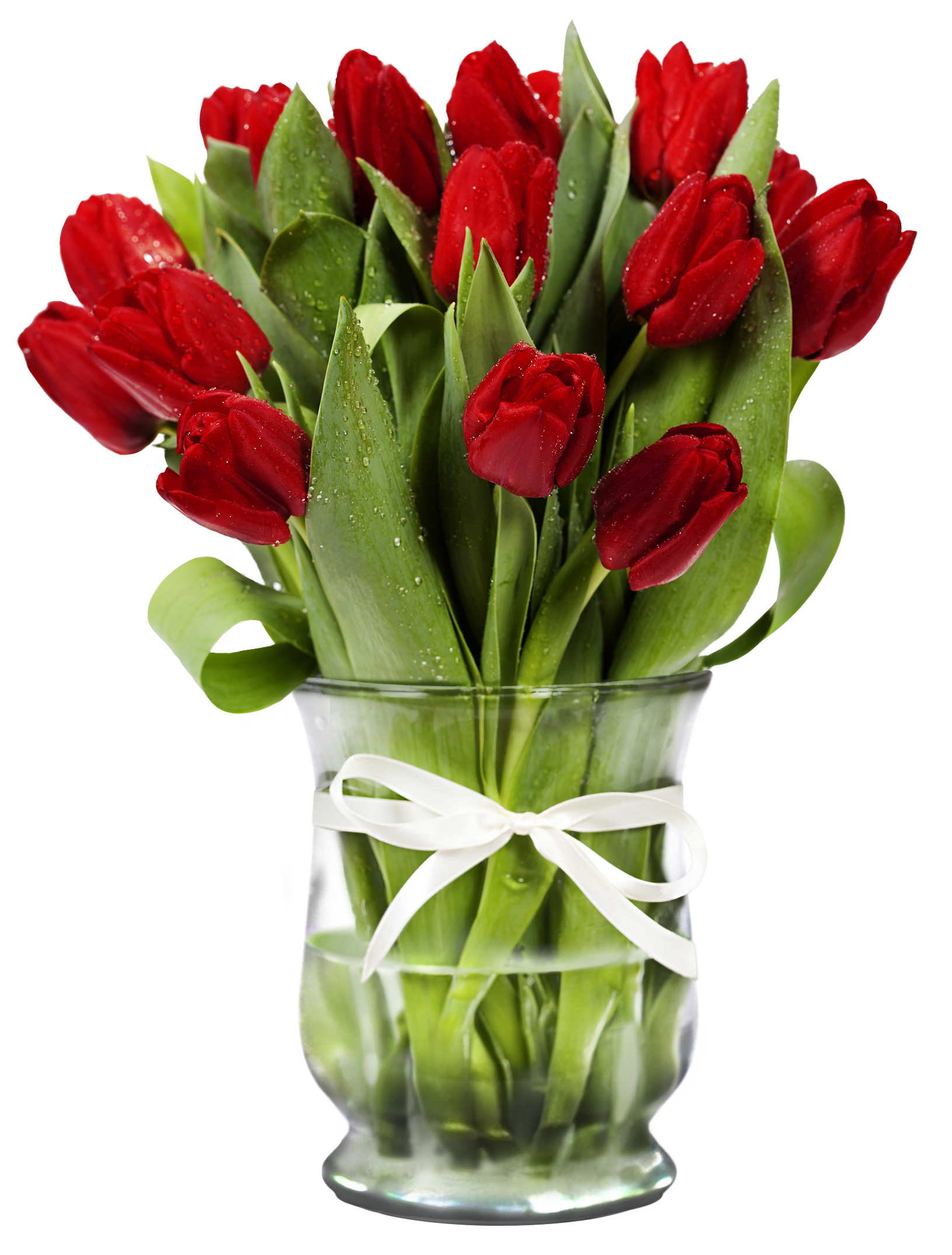 Transparent with red tulips. Vase clipart summer flower