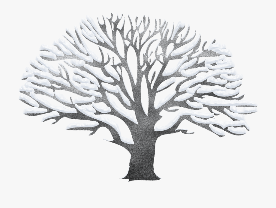 Tree ping png free. Winter clipart plant