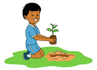 Planting clipart. Woman seeds crazywidow info