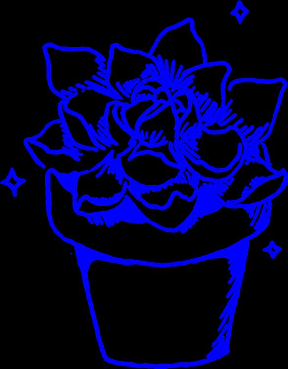 Succulent clipart drawn. Aesthetic succulents cactus cacti