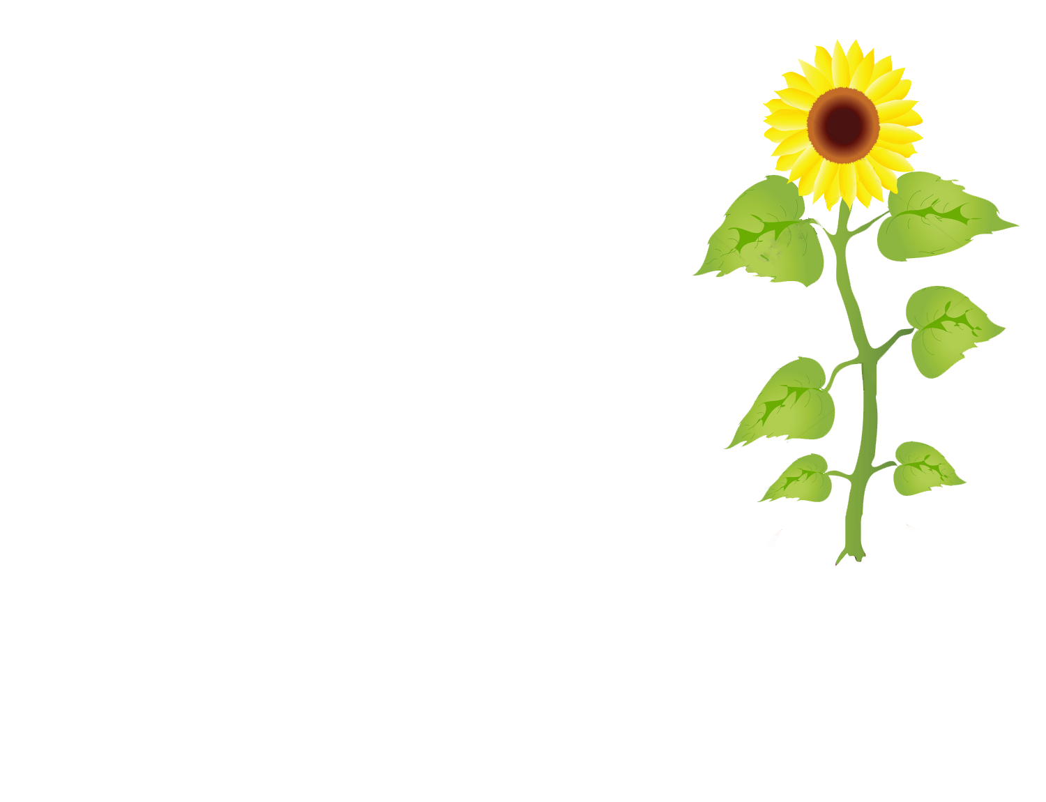 Sunflower planter most sunflowers. Planting clipart animation