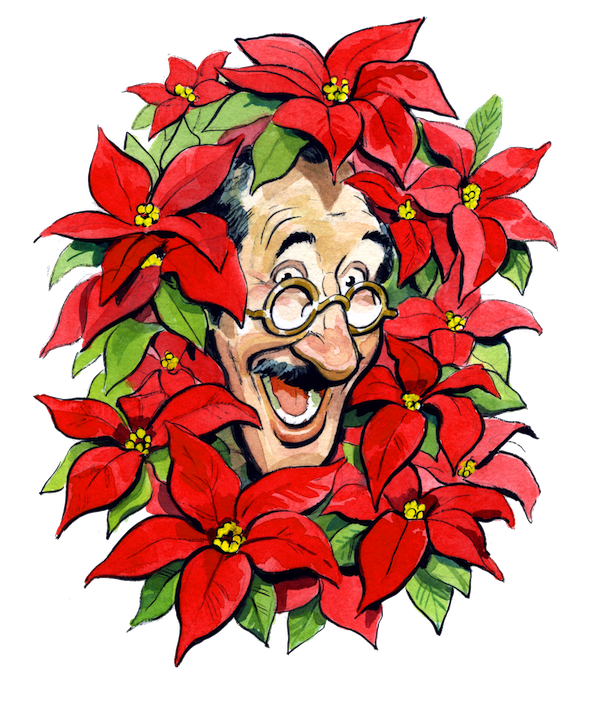 Poinsettias clipart december flower. Have you heard of