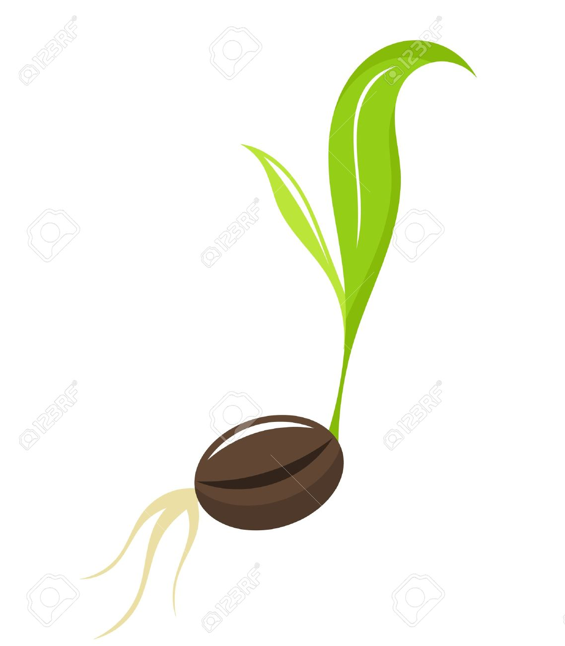 Seedling clipart little plant. Seed planting cliparts free