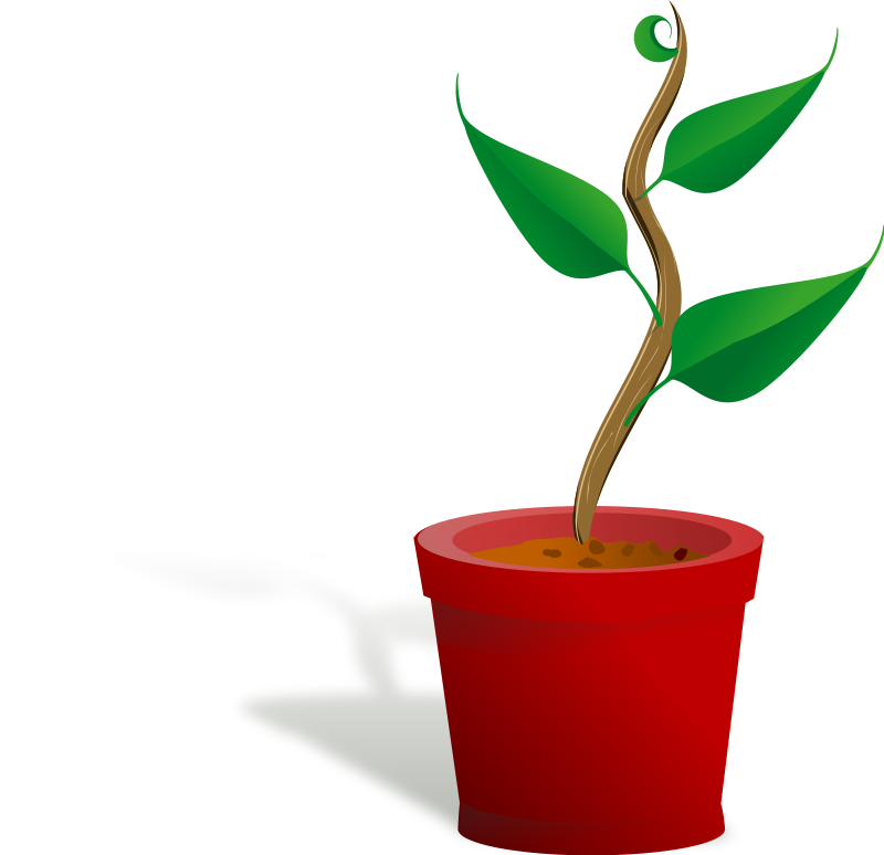 Free flower growing cliparts. Seedling clipart potted plant