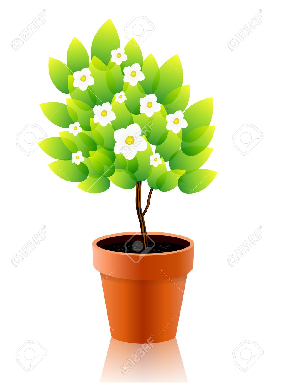Growing free download best. Planting clipart potted plant