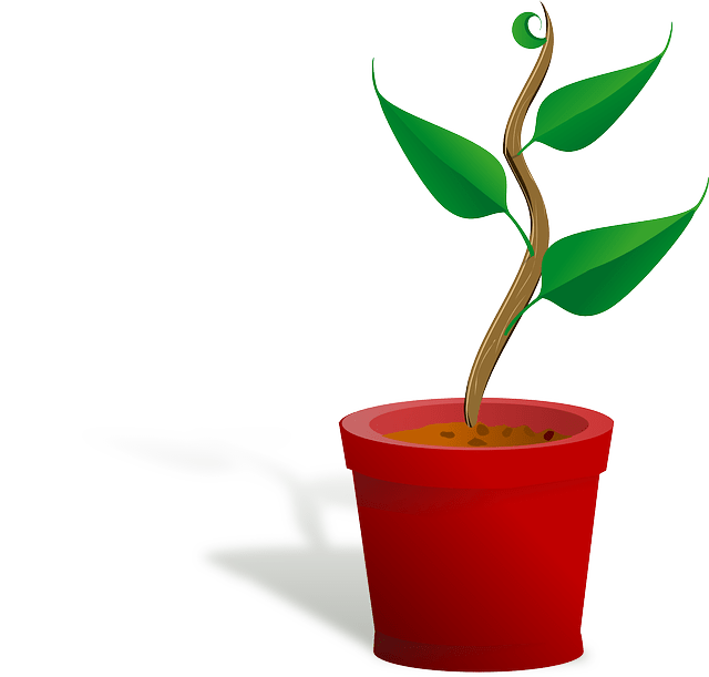Planting clipart potted plant. Merritt river apartments blog
