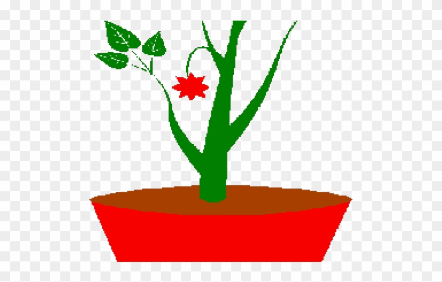 Pot png download . Planting clipart potted plant