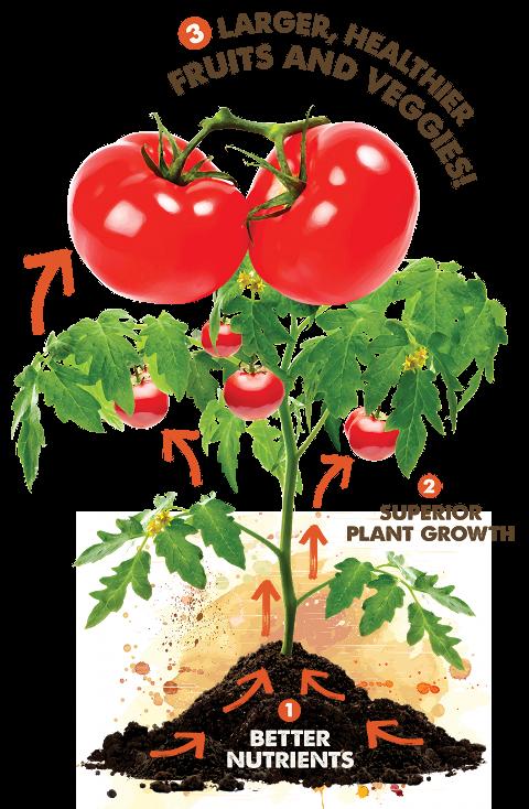 Gardeners living about gardener. Planting clipart rich soil