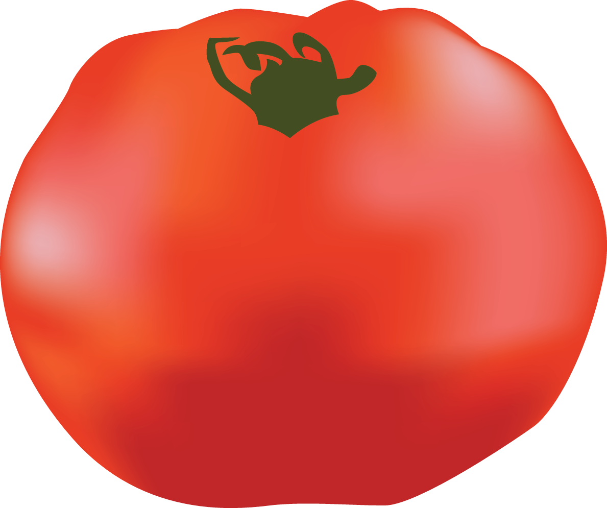 Popular tomato guide part. Tomatoes clipart colour