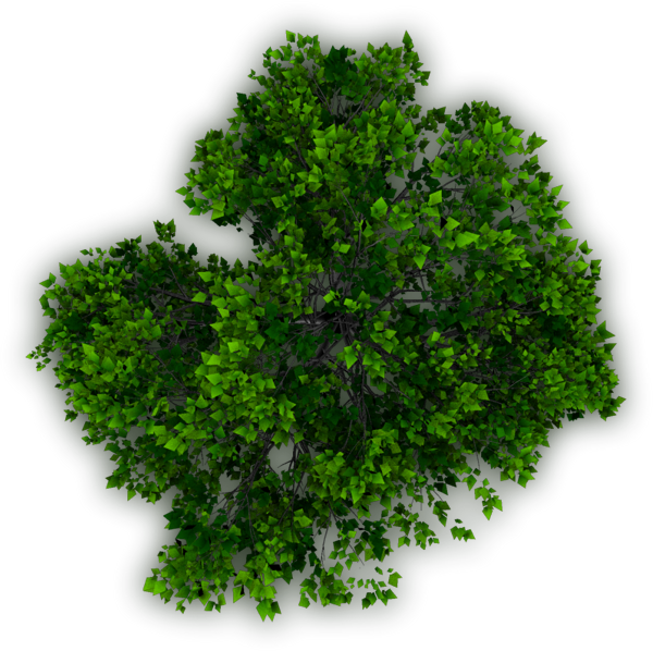 Planting clipart top view. Photoshop trees plan araby