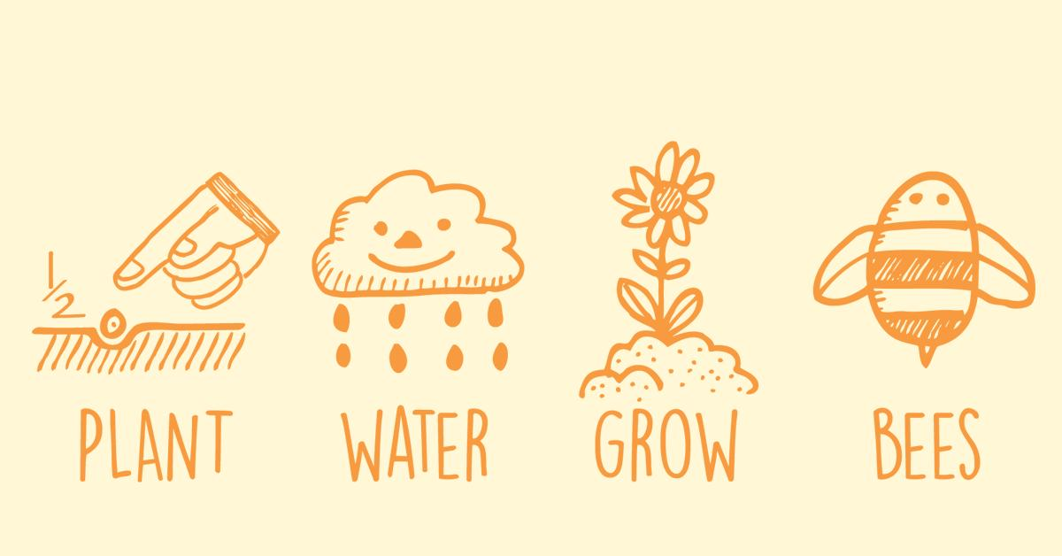Planting clipart water plant. How to wildflower seed