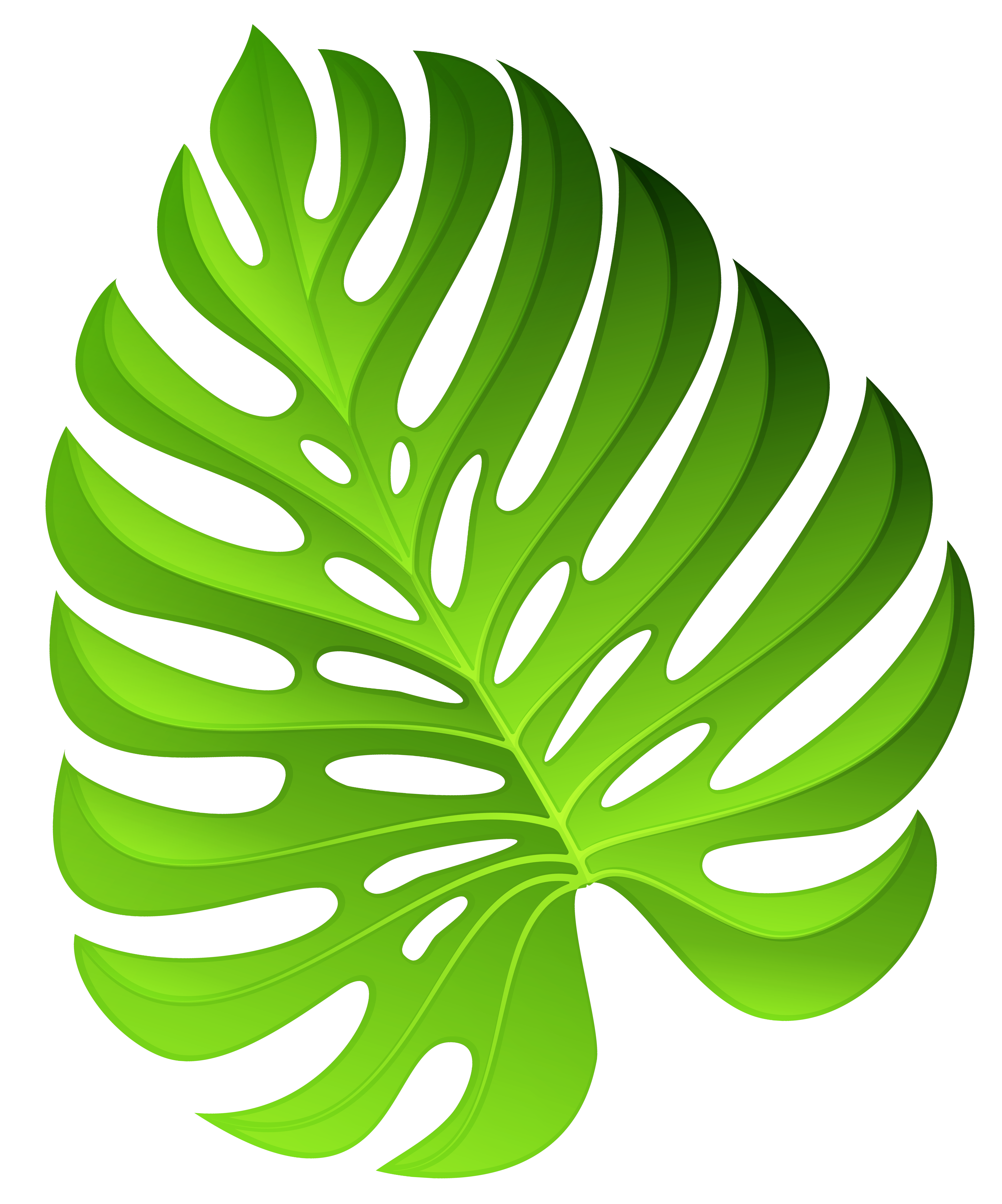 Plant clipart. At getdrawings com free
