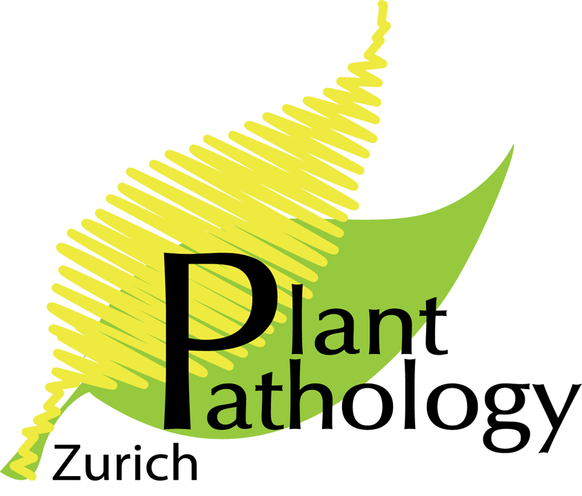 Plant pathology agriculture b. Plants clipart bajra