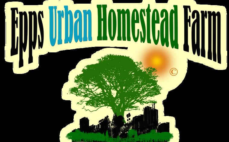 Plants clipart herb. Epps urban homestead farm