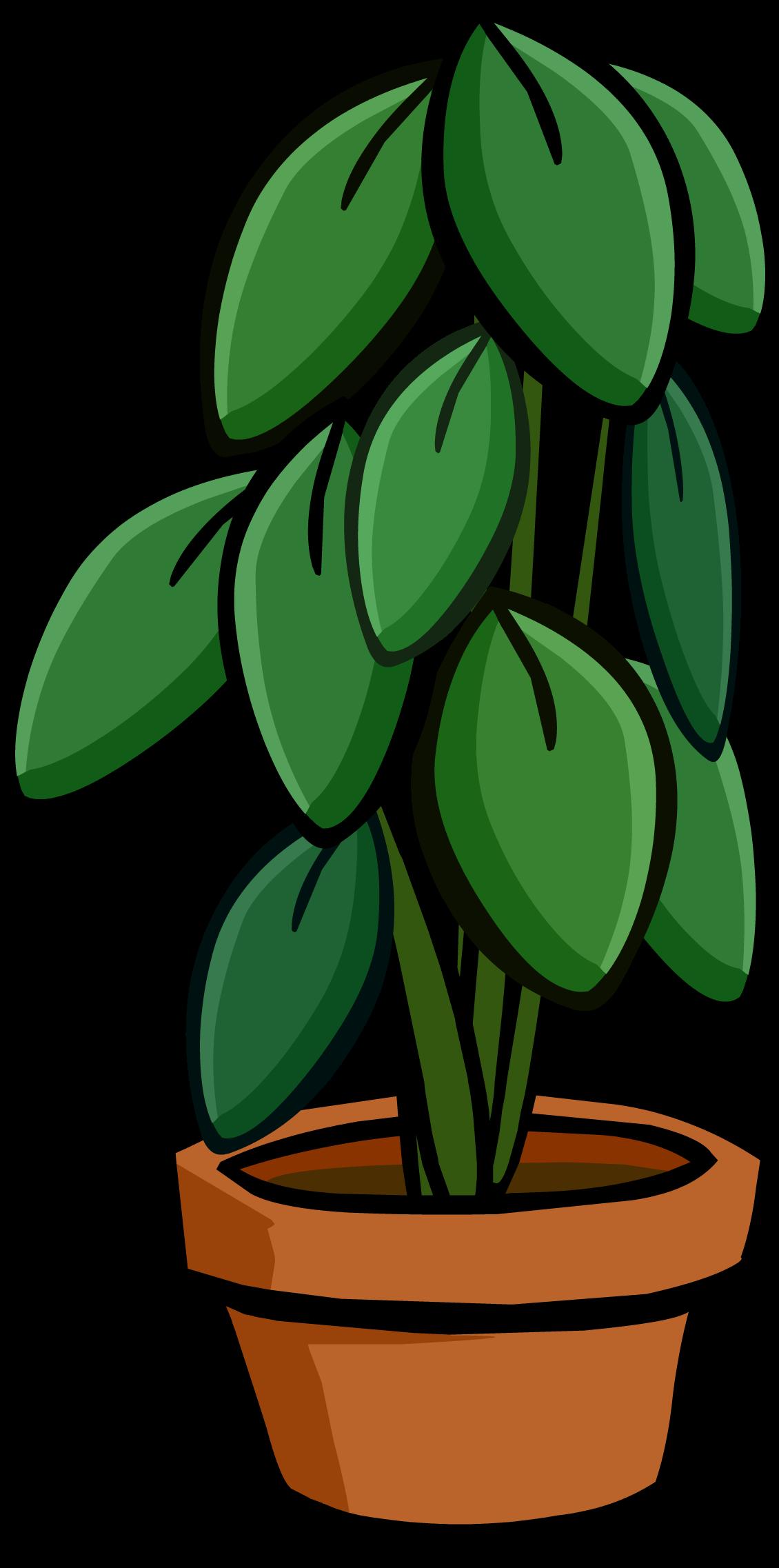 Large club penguin wiki. Plants clipart house plant