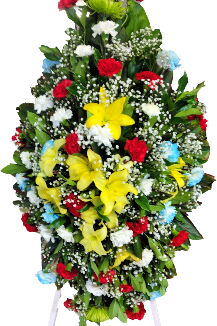 Funeral island flowers by. Plants clipart liana