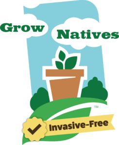 Buy natives directory grow. Plants clipart native plant