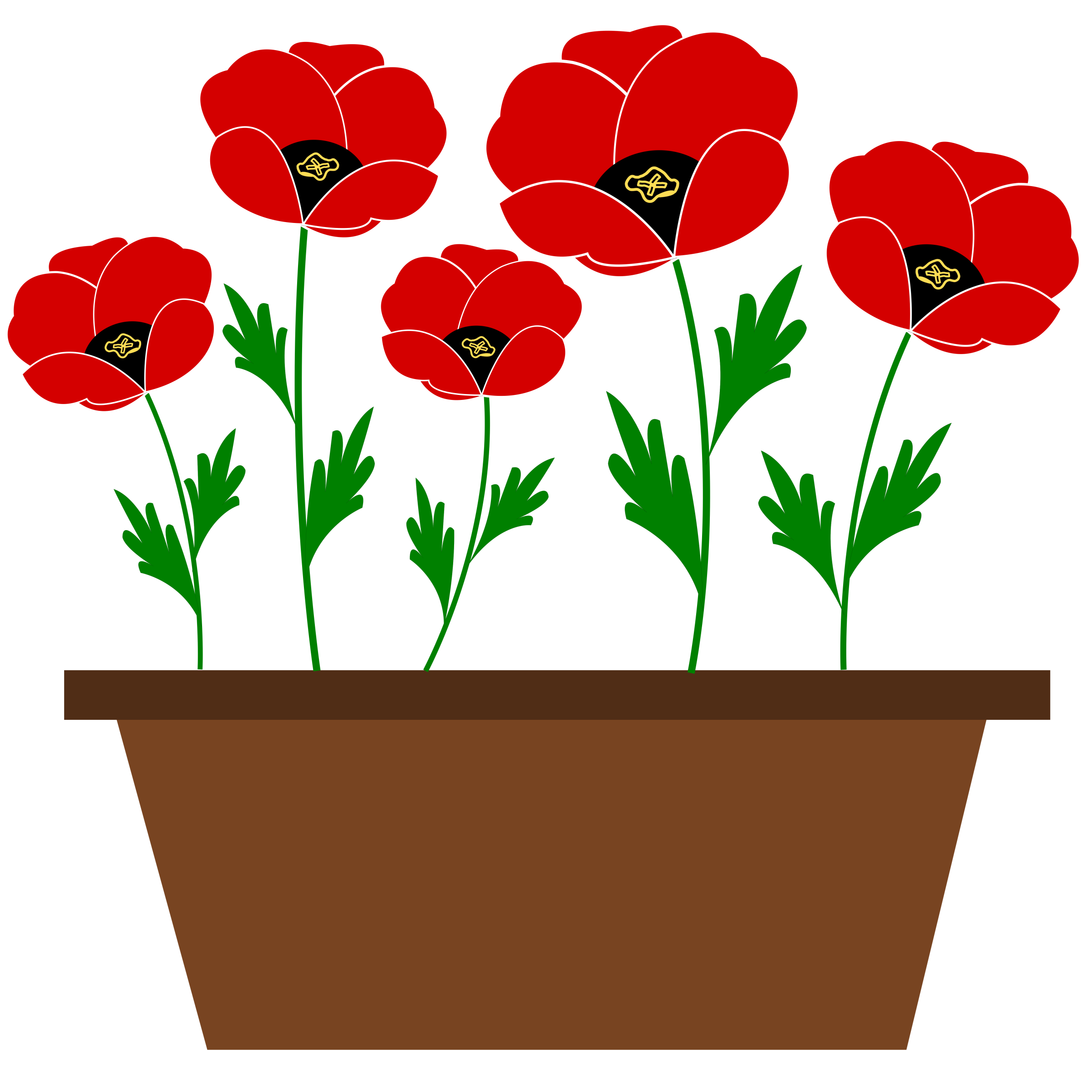 Poppies in a pot. Poppy clipart potplant