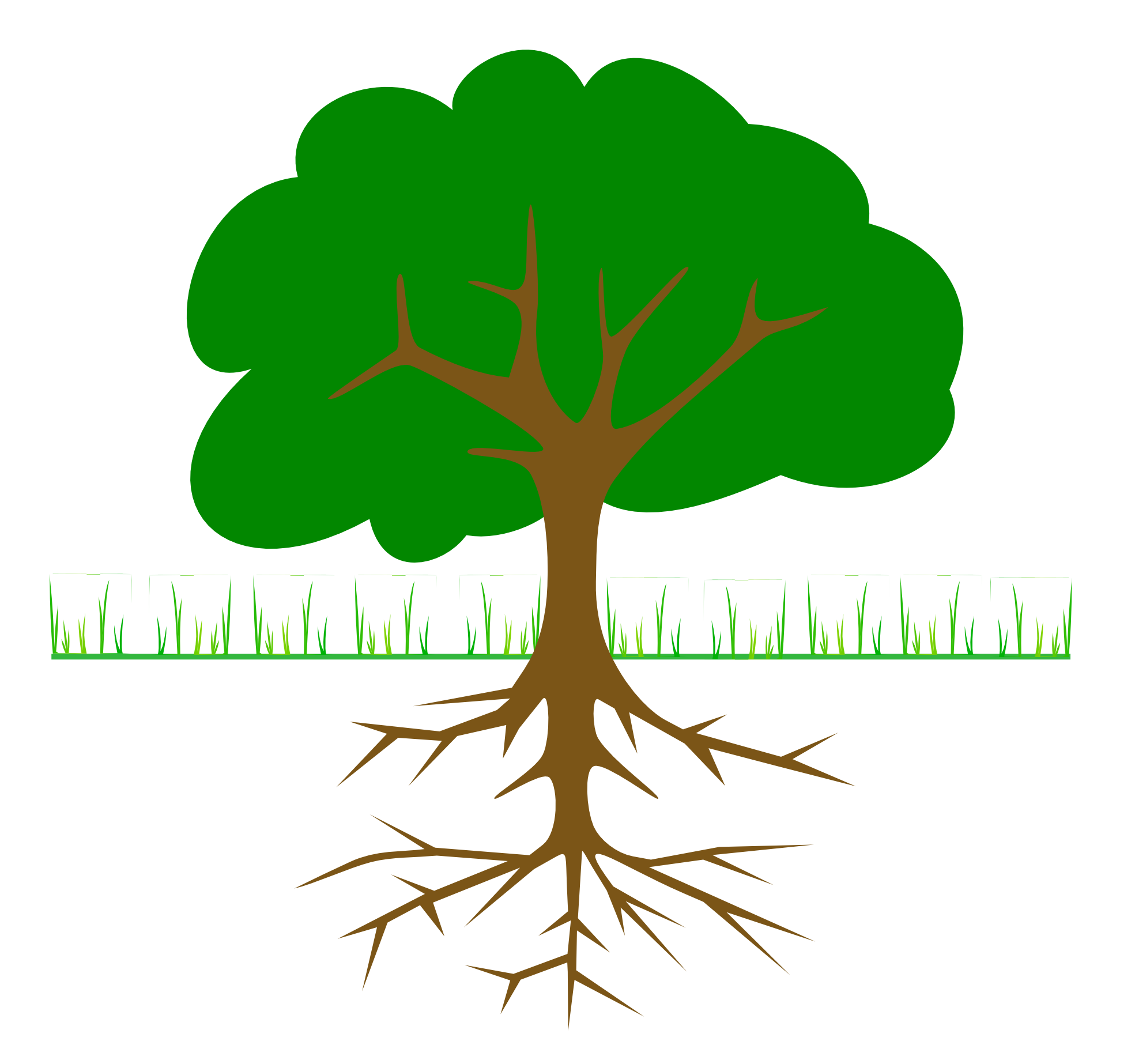 Plant with roots panda. Plants clipart tree