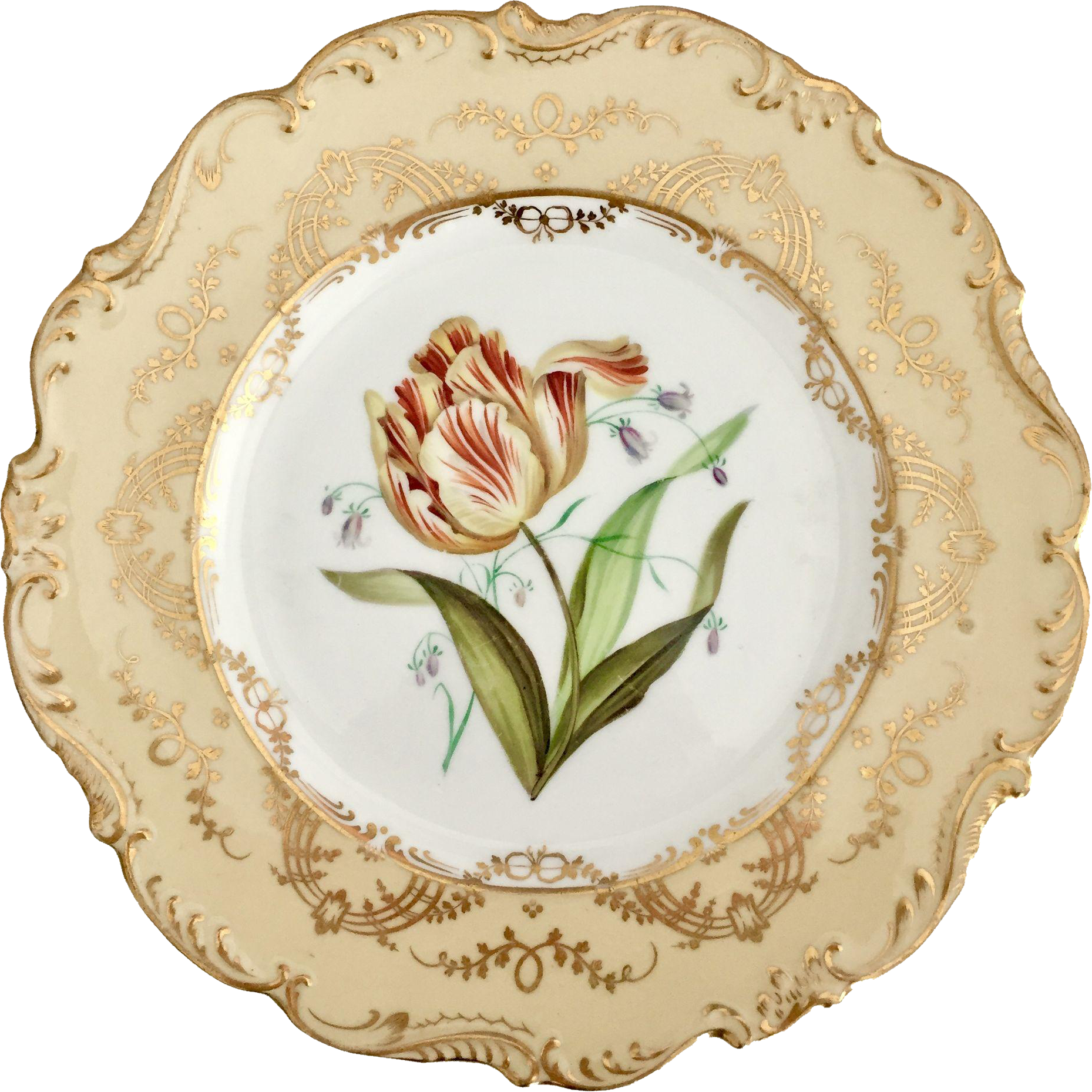 Ridgway dinner sublime botanical. Plate clipart plate china