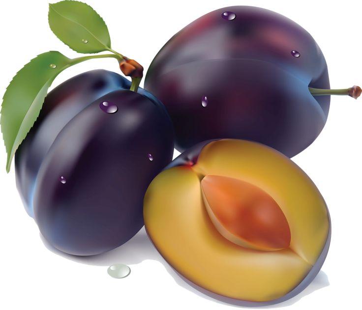 best frutas imagens. Plum clipart