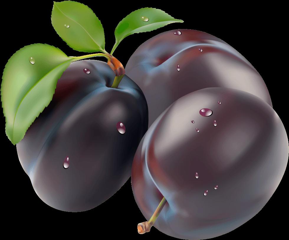 Plum clipart sugar plum. Download png image hq