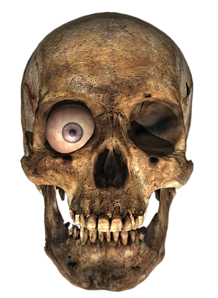Png images with transparent background. Skull render on by