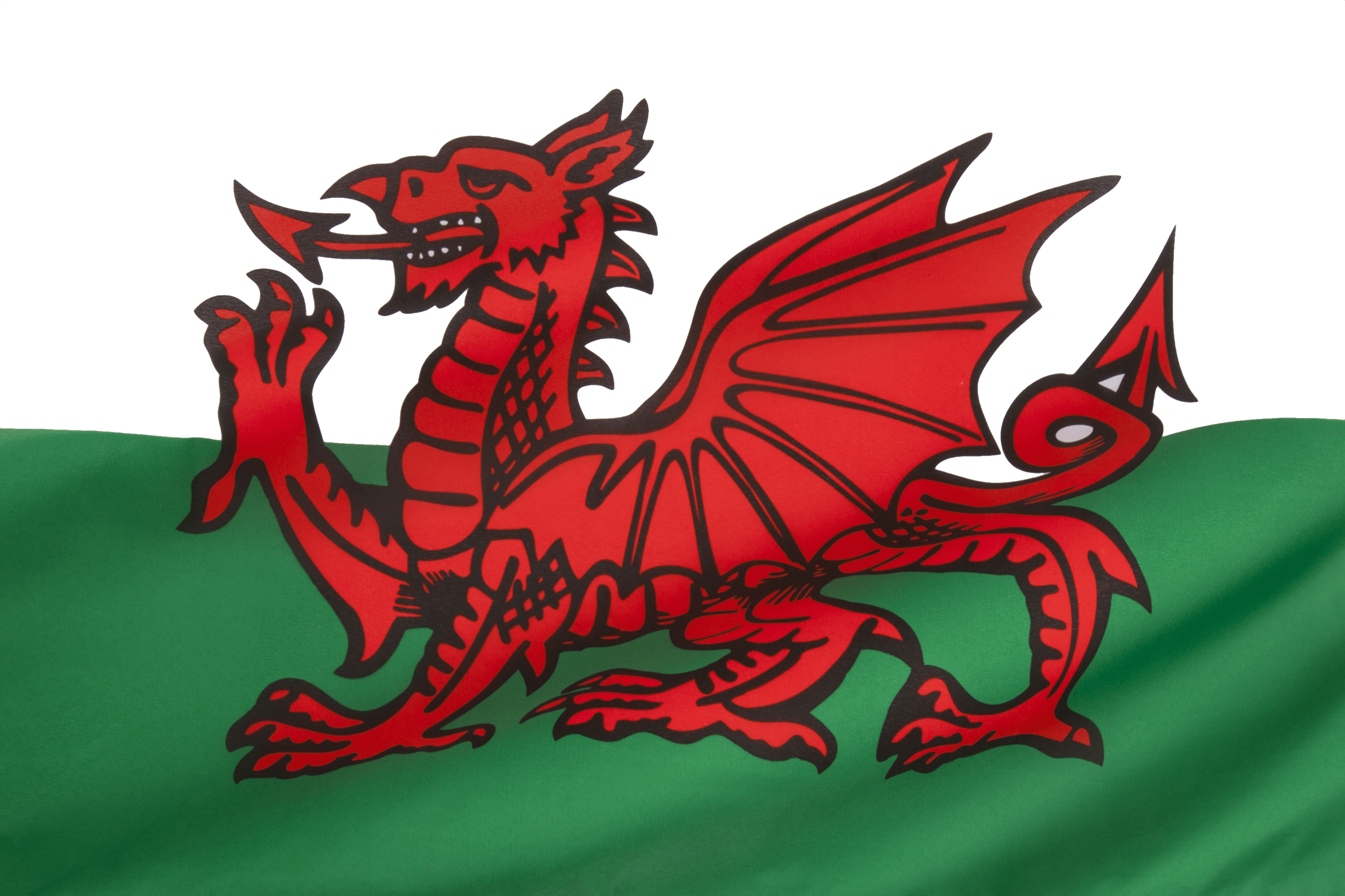 Poetry clipart eisteddfod. Welsh dragon on transparent
