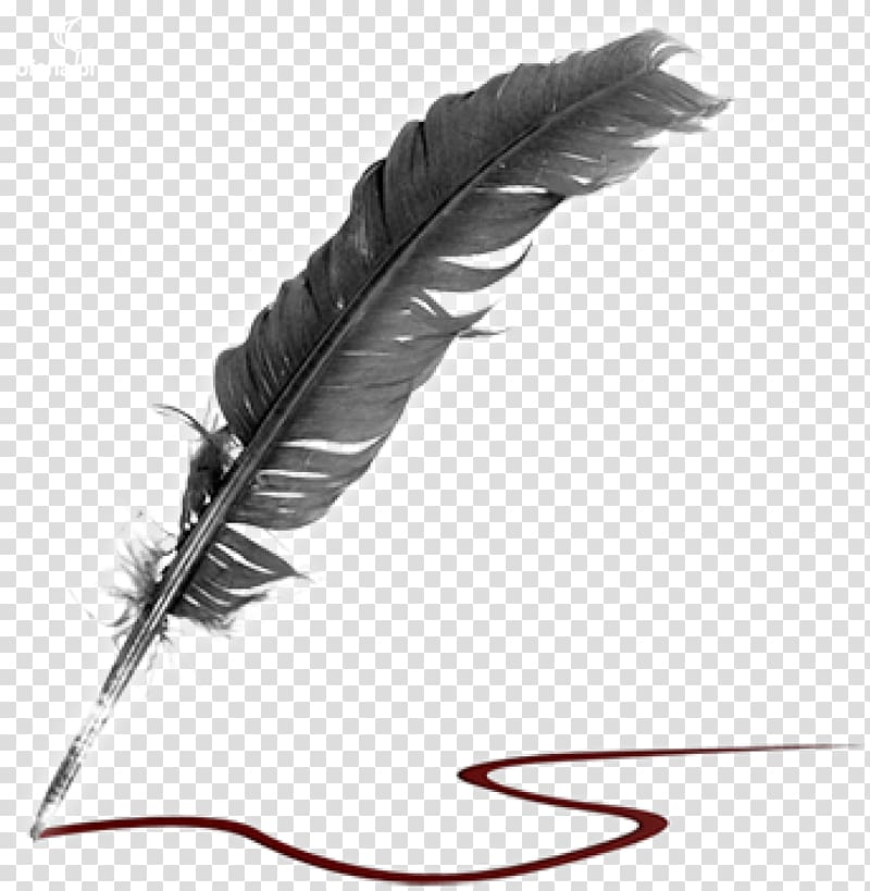 Literature quill creative writing. Poetry clipart feather