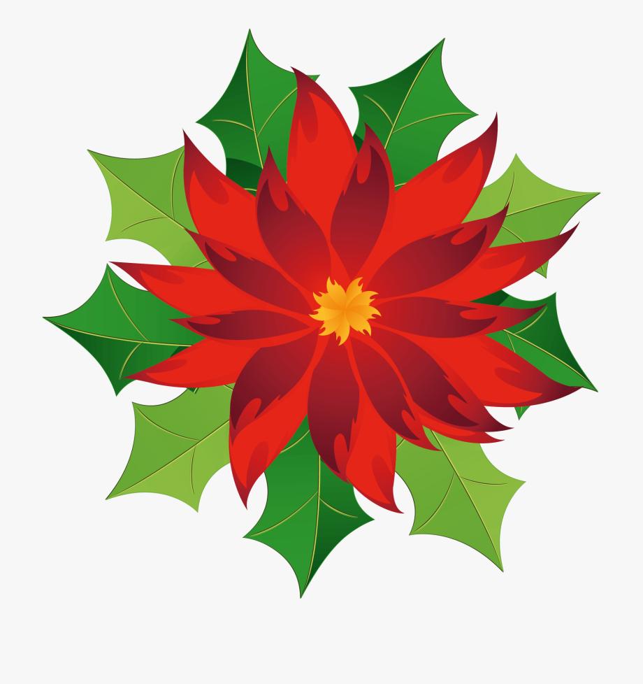 Christmas . Poinsettias clipart poinsettia wreath