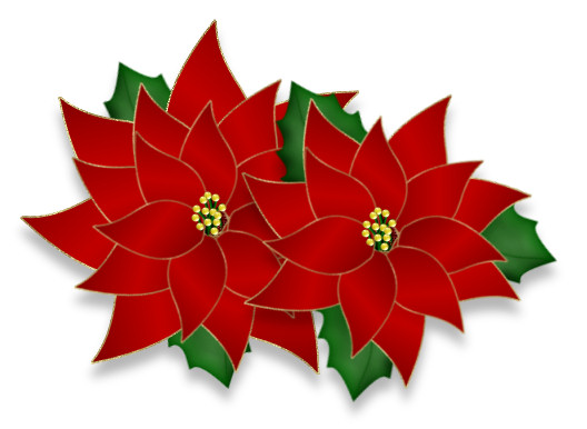 Poinsettia clipart. Psp tube download christmas