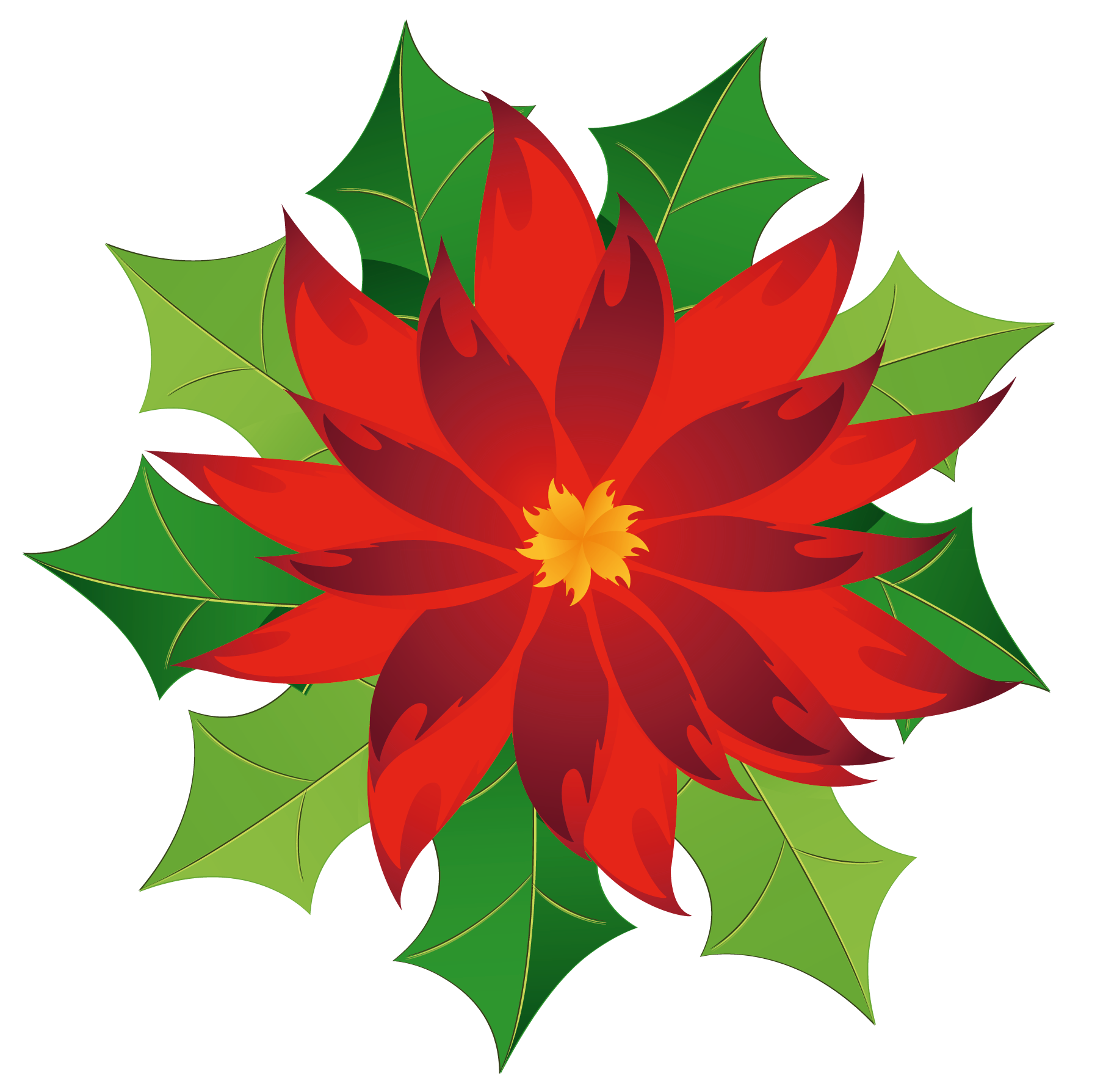 Poinsettia clipart. Christmas gallery yopriceville high