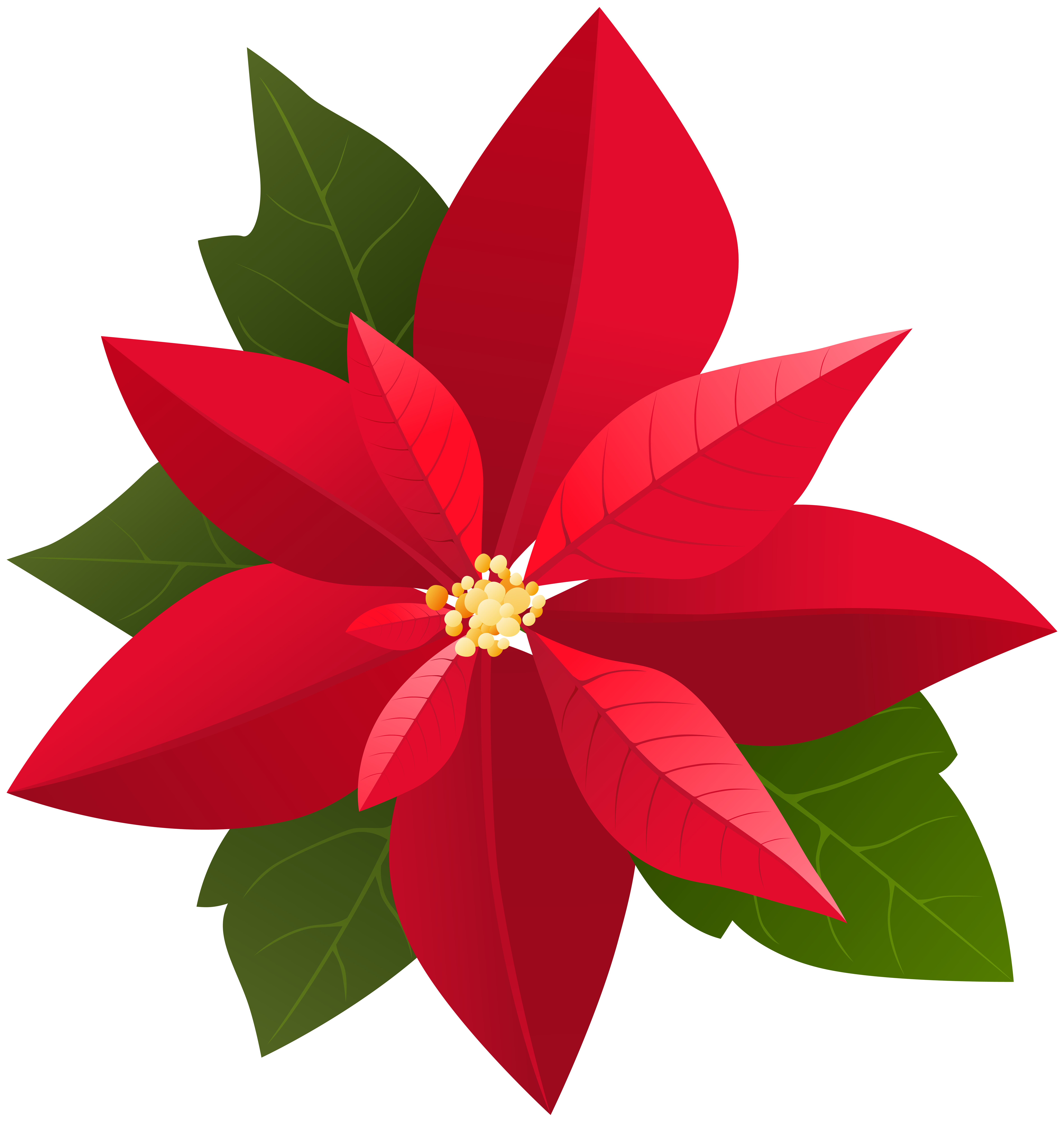 Clipart christmas leaves. Poinsettia png clip art